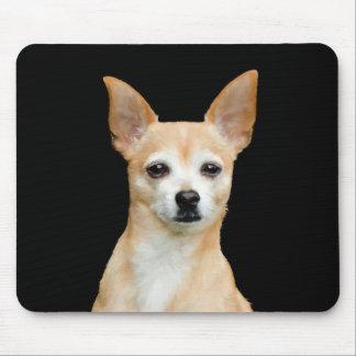 Mousepad Chihuahua pintada bege no fundo preto
