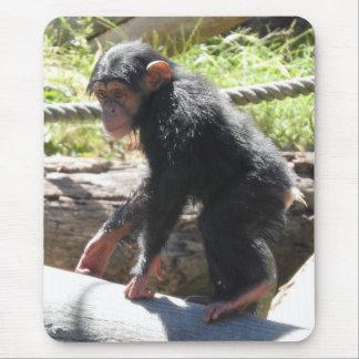 Mousepad Chimpanzé do bebê