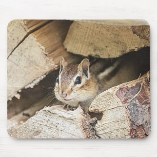 Mousepad Chipmunk em uma pilha de madeira