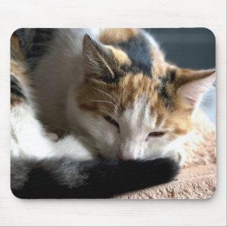 Mousepad Chita do sono