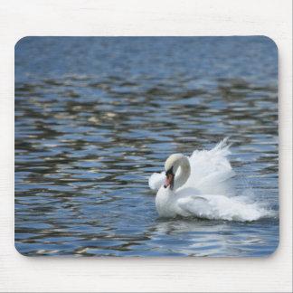 Mousepad Cisne que espirra na água