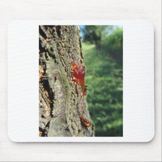 Mousepad Close up da excreção da árvore de pera da resina