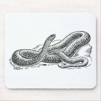 Mousepad Cobra