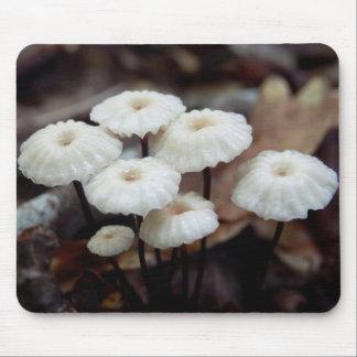Mousepad Cogumelo do rotula do Marasmius