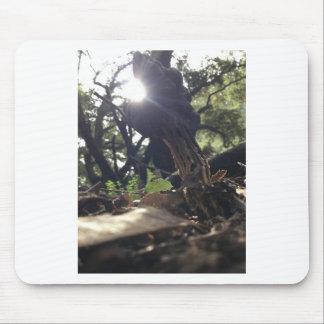 Mousepad Cogumelo Elfin da sela