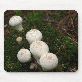 Mousepad Cogumelos do puffball do Lycoperdon