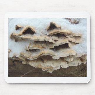 Mousepad Cogumelos no inverno