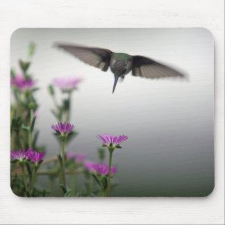 Mousepad Colibri
