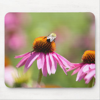 Mousepad Coneflower e abelha do mel