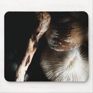 Mousepad coral de cogumelo secado, escudo, madeira lançada
