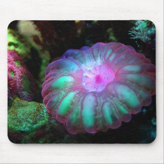 Mousepad Coral submarino de incandescência
