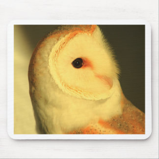Mousepad Coruja de celeiro