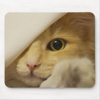 Mousepad Couro cru - e - gato colorido creme da busca