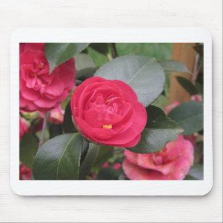 Mousepad Cultivar japonês antigo do japonica vermelho da
