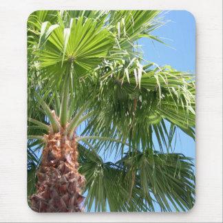Mousepad da palma do céu
