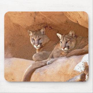mousepad de dois leões de montanha