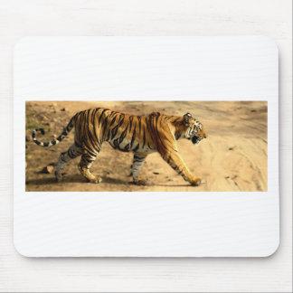 Mousepad Desengaço de Tigres dos alugueres