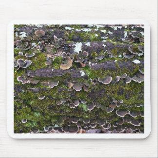 Mousepad divertimento mossy do cogumelo