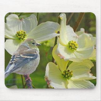 """Mousepad Do """"aves canoras do passarinho do visitante"""