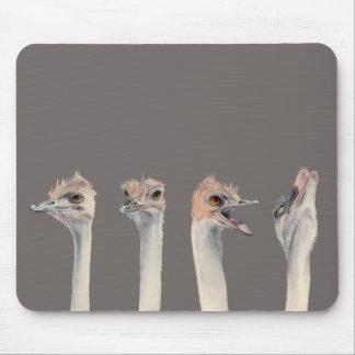 """Mousepad Do """"pintura engraçada das avestruzes da rainha"""