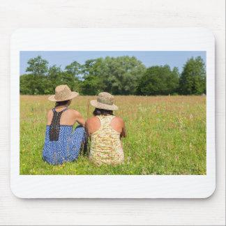 Mousepad Dois amigos que sentam-se junto em meadow.JPG