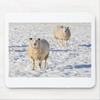 Mousepad Dois carneiros que estão na neve durante o inverno