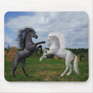 Mousepad Dois cavalos