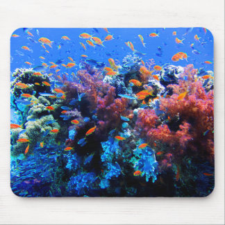 Mousepad Ecossistema subaquático tropical