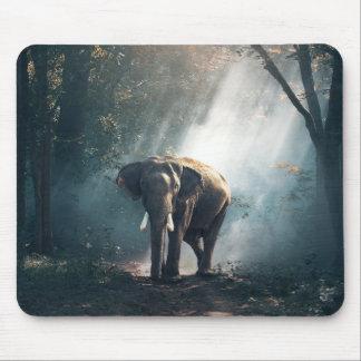 Mousepad Elefante asiático em um esclarecimento Sunlit da