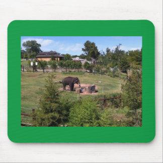 Mousepad elefante que pasta