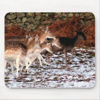 Mousepad Em suas marcas (cervos)