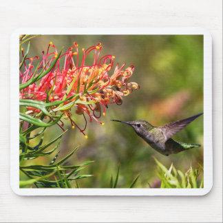 Mousepad Em vôo alimentação do colibri