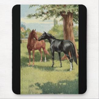 Mousepad Equestrian do garanhão da égua do cavalo do