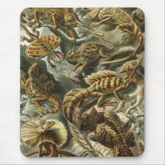 Mousepad Ernst Haeckel - Lacertilia