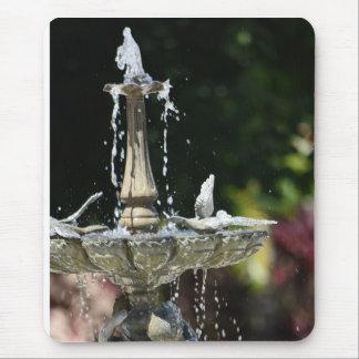 Mousepad Espirro da fonte de água no jardim de Hollis