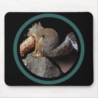 Mousepad Esquilo de Pinecone - multi quadro
