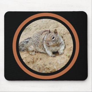 Mousepad Esquilo de Sandy - multi quadro