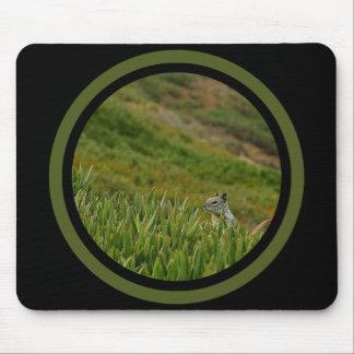 Mousepad Esquilo do discrição - multi quadro