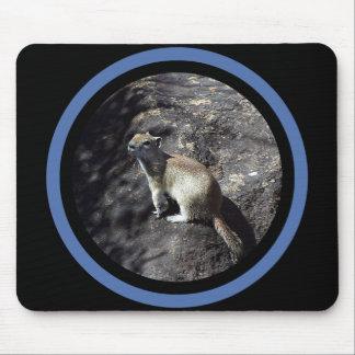 Mousepad Esquilo lustroso - multi quadro