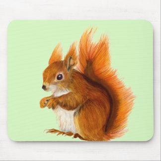 Mousepad Esquilo vermelho pintado na arte dos animais