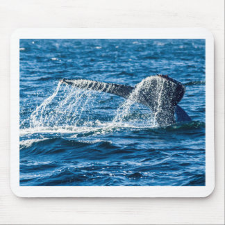 Mousepad Estado de Washington da baleia de Humpback