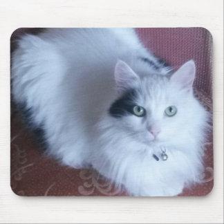 Mousepad Esteira bonito do rato do gato macio branco