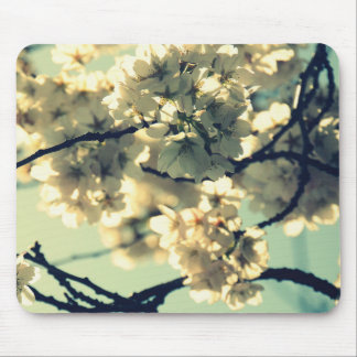 Mousepad Esteira do rato da flor de cerejeira