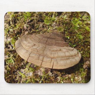 Mousepad Esteira do rato do cogumelo do igniarius de