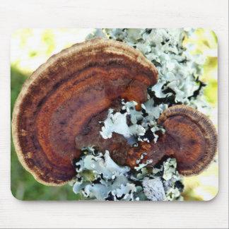 Mousepad Esteira do rato do fungo de Mazegill do carvalho
