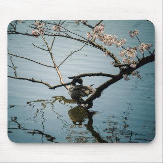Mousepad Esteira do rato do pato e da flor de cerejeira