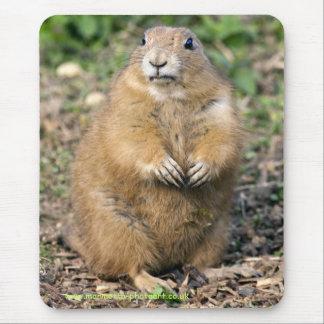 Mousepad Eu não sou gordo, mim sou Mousemat peluches