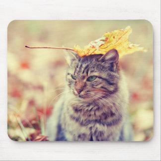 Mousepad Exercicio de equilibrio da folha do gatinho