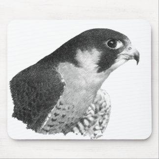 Mousepad Falcão-Lápis do peregrino