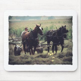 Mousepad Feno do fazer com cavalos